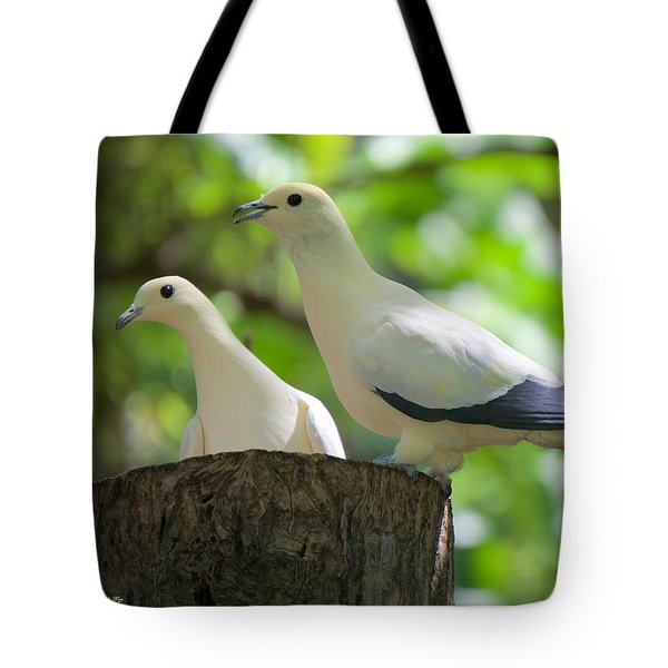 The Duet Tote Bag by Judy Kay