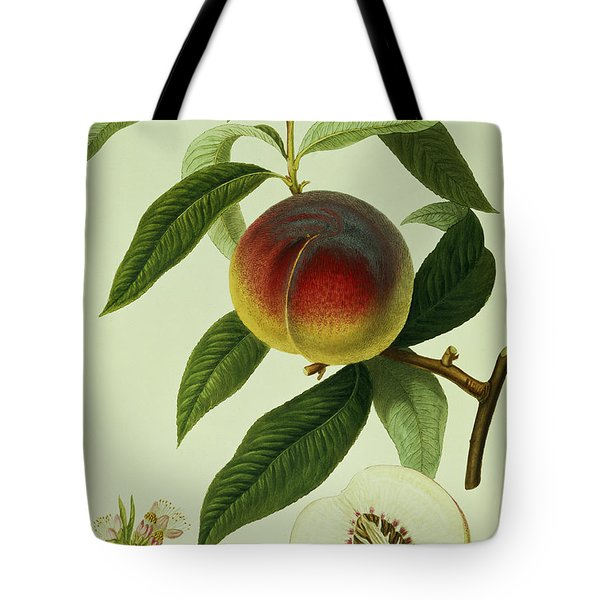 The Galande Peach Tote Bag by William Hooker
