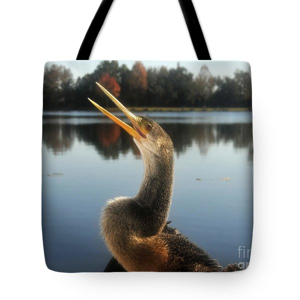 The Great Golden Crested Anhinga Tote Bag by David Lee Thompson