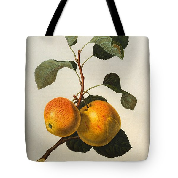 The Kerry Pippin Tote Bag by William Hooker