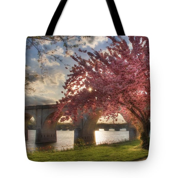 The Last Glimmer Tote Bag by Lori Deiter