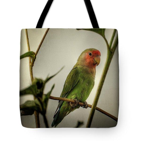 The Lovebird  Tote Bag by Saija  Lehtonen
