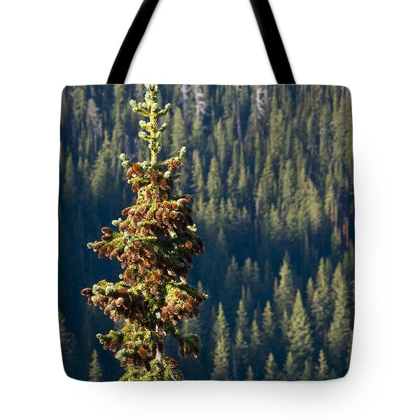 The Next Generation Tote Bag by Albert Seger