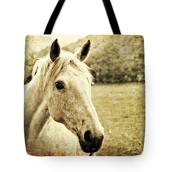 The Old Grey Mare Tote Bag by Meirion Matthias