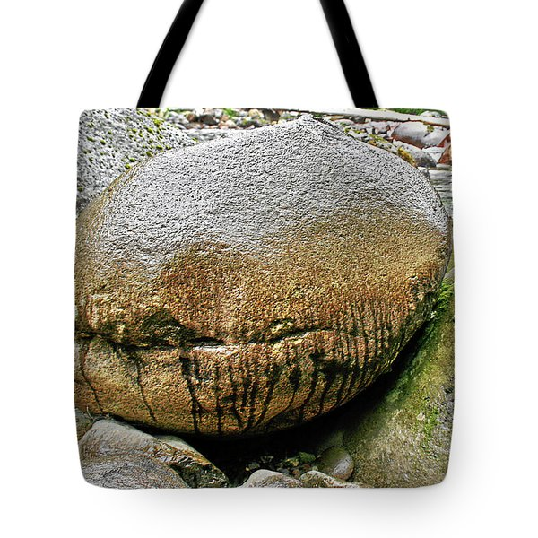 The philosophers' stone Tote Bag by Christine Till