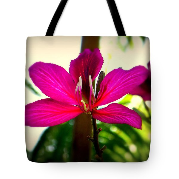 The Pink Lady Tote Bag by Karen Wiles