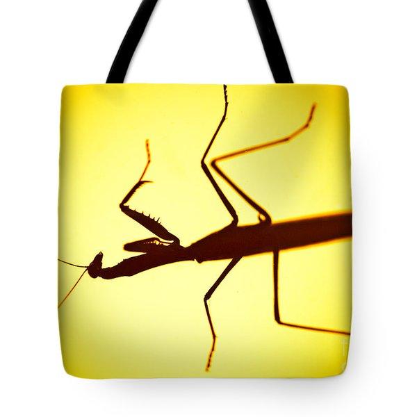 The Predator Tote Bag by Charles Dobbs