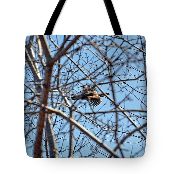 The Ruffed Grouse Flying Through Trees And Branches Tote Bag by Asbed Iskedjian