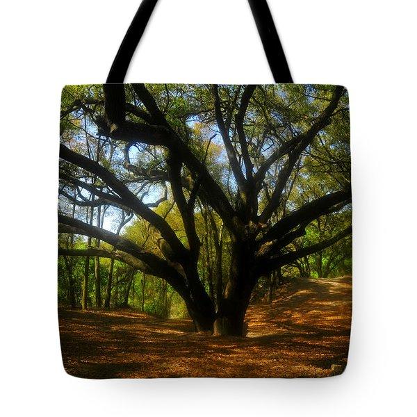 The Sacred Oak Tote Bag by David Lee Thompson