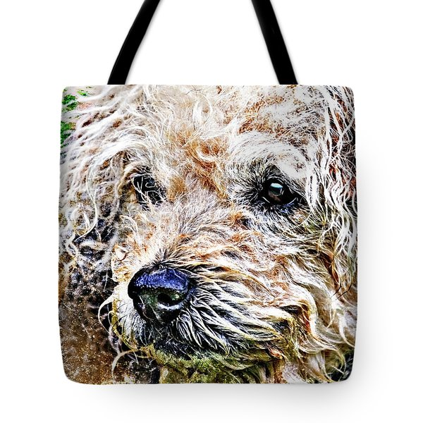 the scruffiest dog in the world Tote Bag by Meirion Matthias
