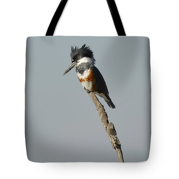The Stand Tote Bag by Fraida Gutovich