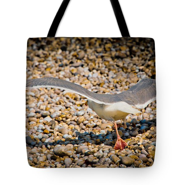The Takeoff Tote Bag by Loriental Photography