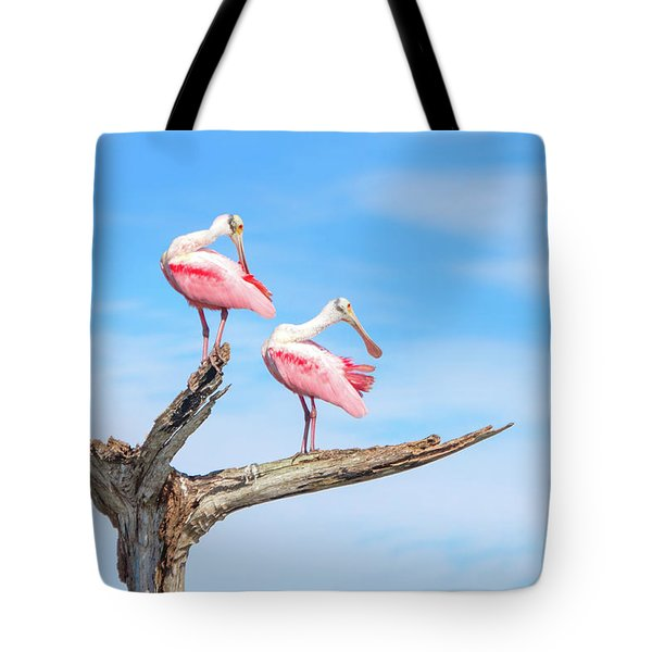 The View From Above Tote Bag by Mark Andrew Thomas