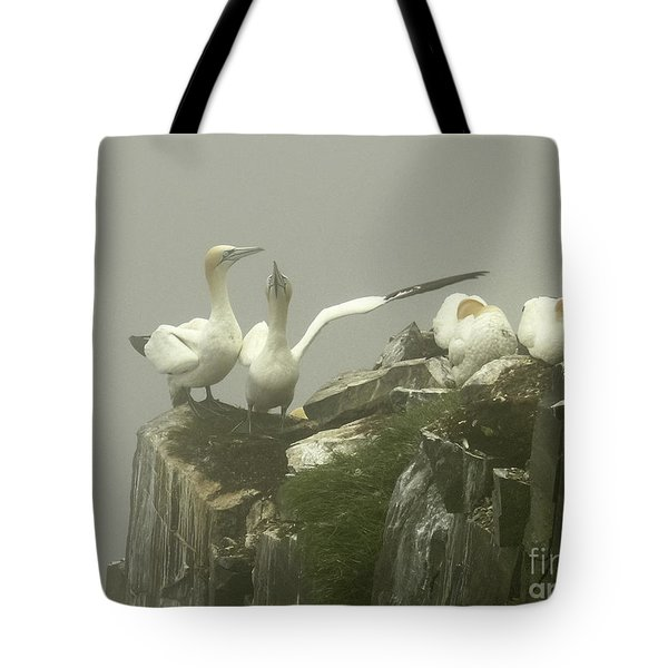 They Went That Away Tote Bag by Teresa A and Preston S Cole Photography