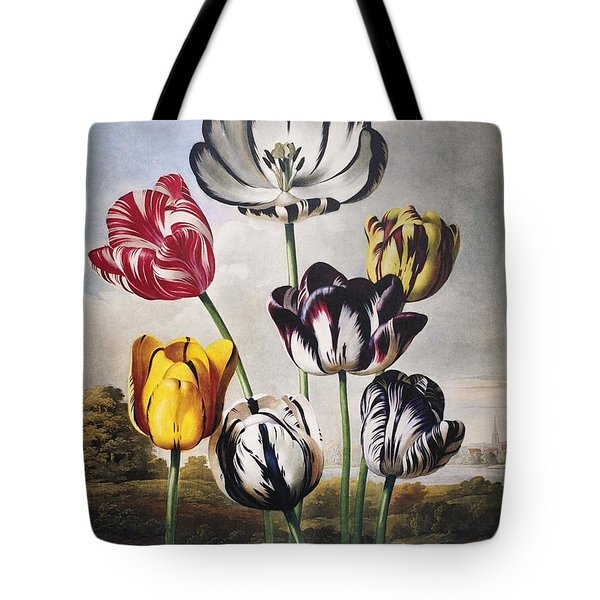 Thornton: Tulips Tote Bag by Granger