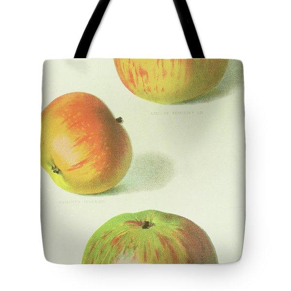 Three Apples Tote Bag by English School