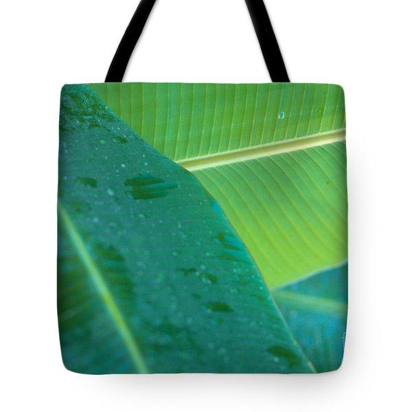 Three Banana Leaves Tote Bag by Dana Edmunds - Printscapes