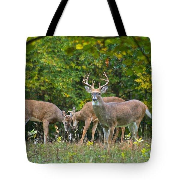 Three Bucks_0054_4463 Tote Bag by Michael Peychich