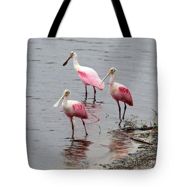 Three Roseate Spoonbills Square Tote Bag by Carol Groenen