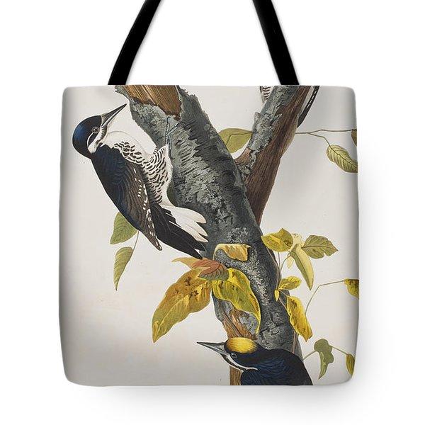 Three Toed Woodpecker Tote Bag by John James Audubon