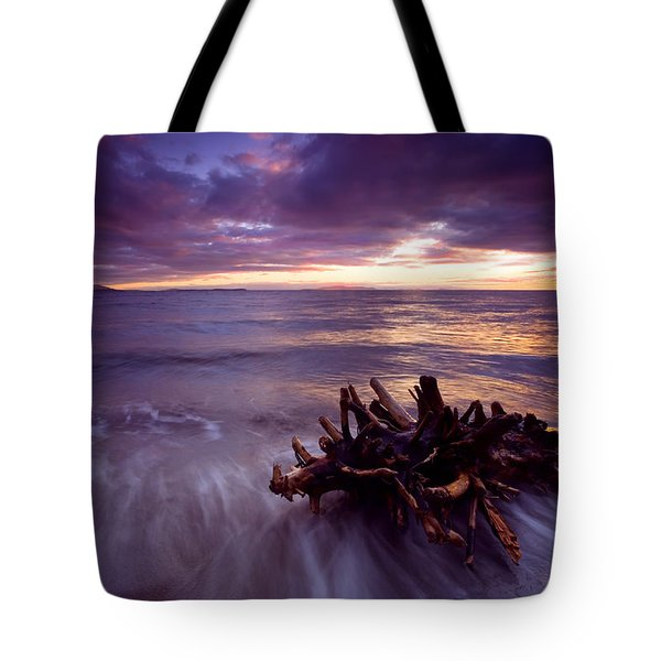 Tide Driven Tote Bag by Mike  Dawson
