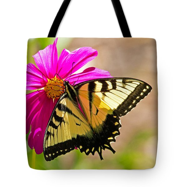Tiger Swallowtail Butterfly. Tote Bag by David Freuthal
