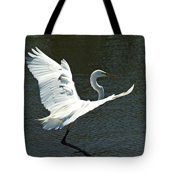 Time To Land Tote Bag by Carolyn Marshall