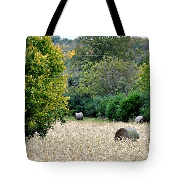Tomorrow Never Knows Tote Bag by Jan Amiss Photography