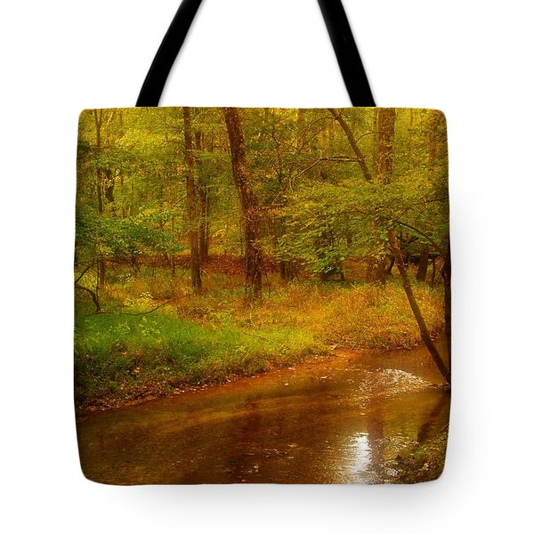 Tranquility Stream - Allaire State Park Tote Bag by Angie Tirado