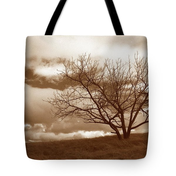 Tree In Storm Tote Bag by Kathy Yates