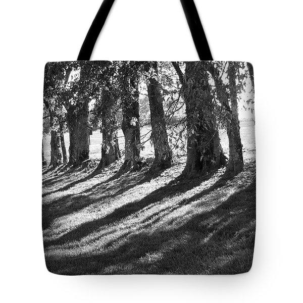Treeline Tote Bag by Amy Tyler