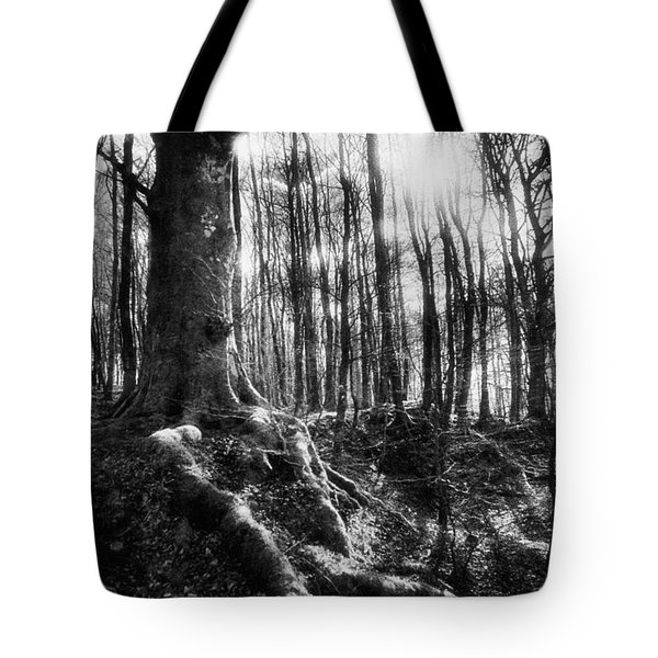 Trees At The Entrance To The Valley Of No Return Tote Bag by Simon Marsden