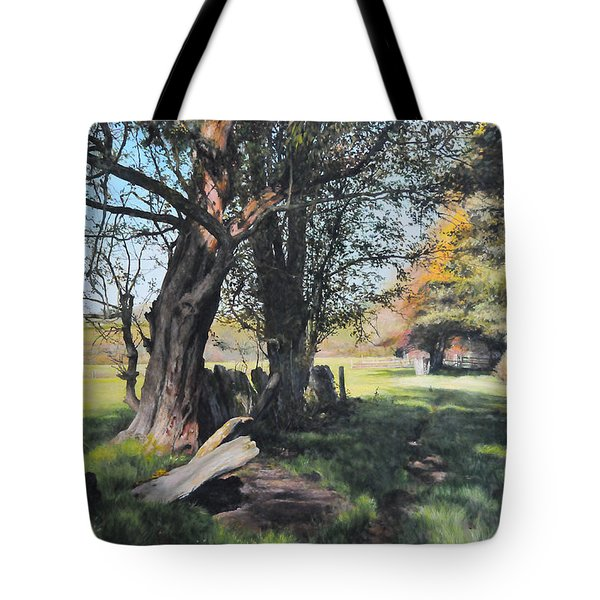 Trees Near Rhug. Tote Bag by Harry Robertson