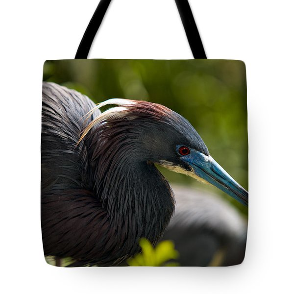 Tri-colored Heron Tote Bag by Christopher Holmes