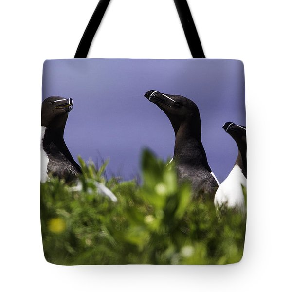 Trio Tote Bag by Marie Elise Mathieu