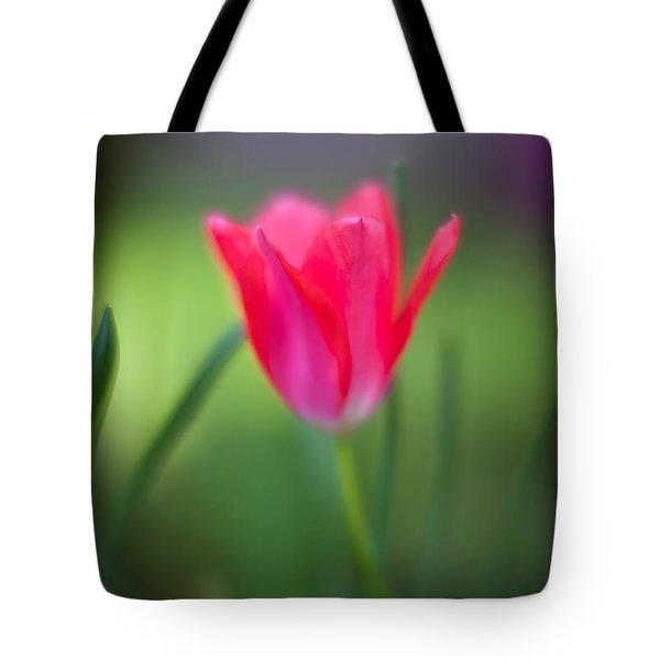 Tulip Amongst Tote Bag by Mike Reid