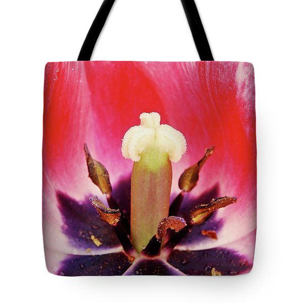Tulip Flame Tote Bag by Michael Peychich
