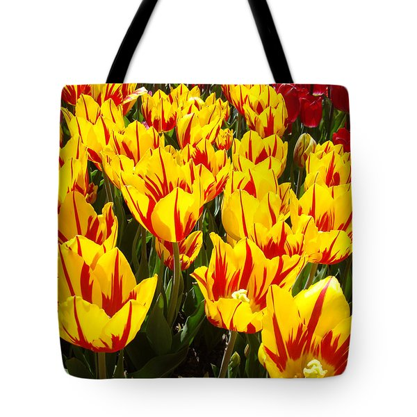 Tulip Flowers Festival Yellow Red Art Prints Tulips Tote Bag by Baslee Troutman