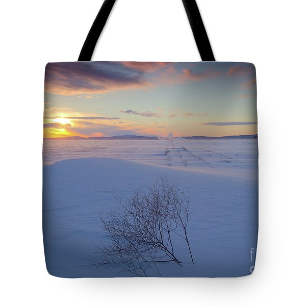 Tumble In The Snow Tote Bag by Idaho Scenic Images Linda Lantzy