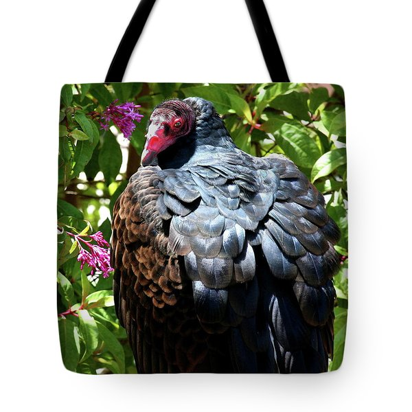 Turkey Vulture Portrait . R6805 Tote Bag by Wingsdomain Art and Photography