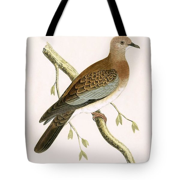 Turtle Dove Tote Bag by English School