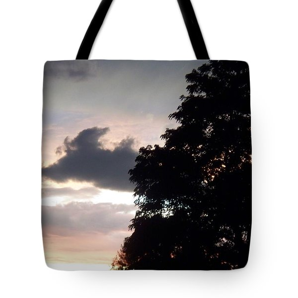 Twilight Landscape Tote Bag by Eric  Schiabor