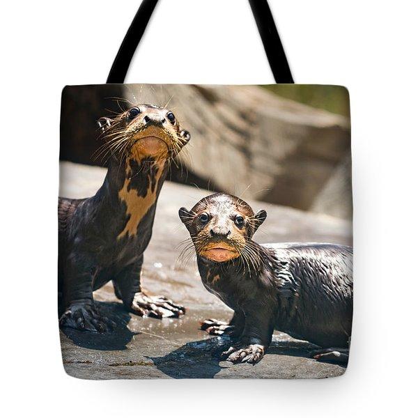 Twins Tote Bag by Jamie Pham