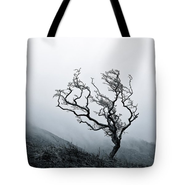 Twisted Tote Bag by Dave Bowman