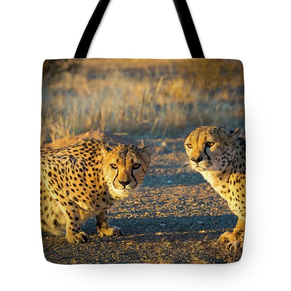 Two Cheetahs Tote Bag by Inge Johnsson