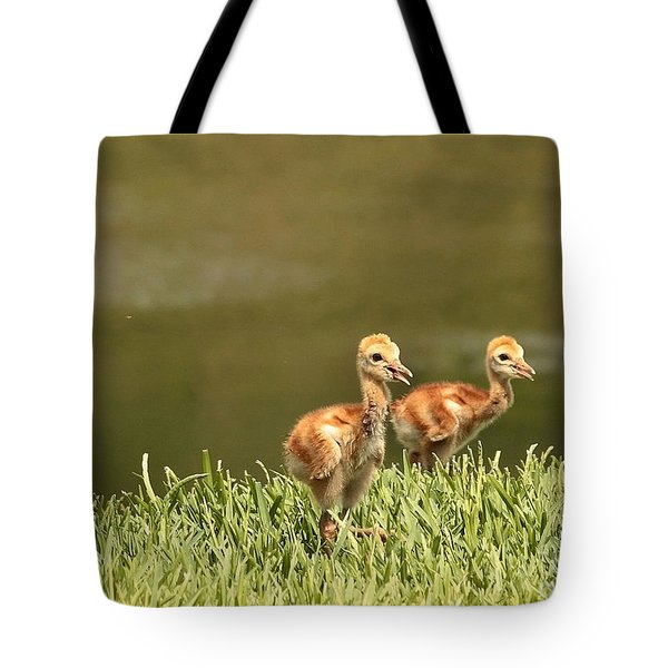 Two Chicks Tote Bag by Carol Groenen