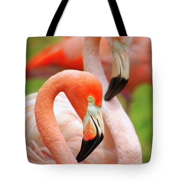 Two Flamingoes Tote Bag by Carlos Caetano
