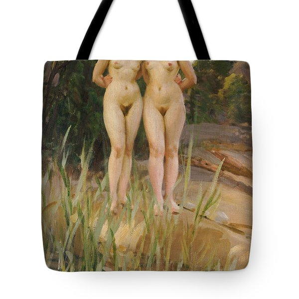 Two Friends  Tote Bag by Anders Leonard Zorn