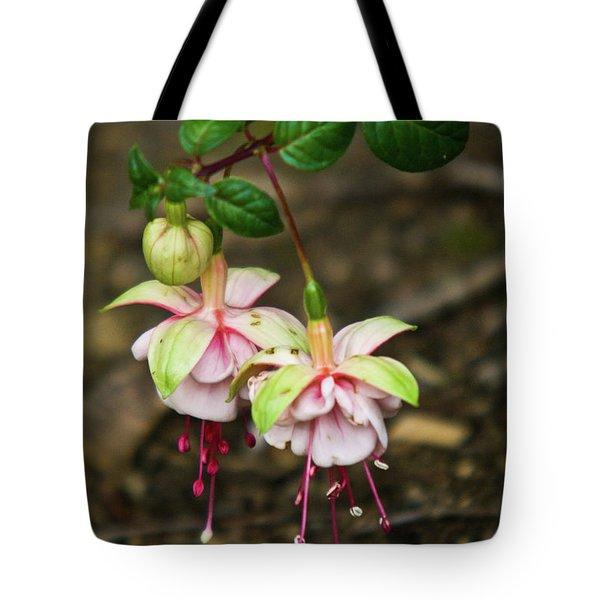 Two Fushia Blossoms Tote Bag by Douglas Barnett
