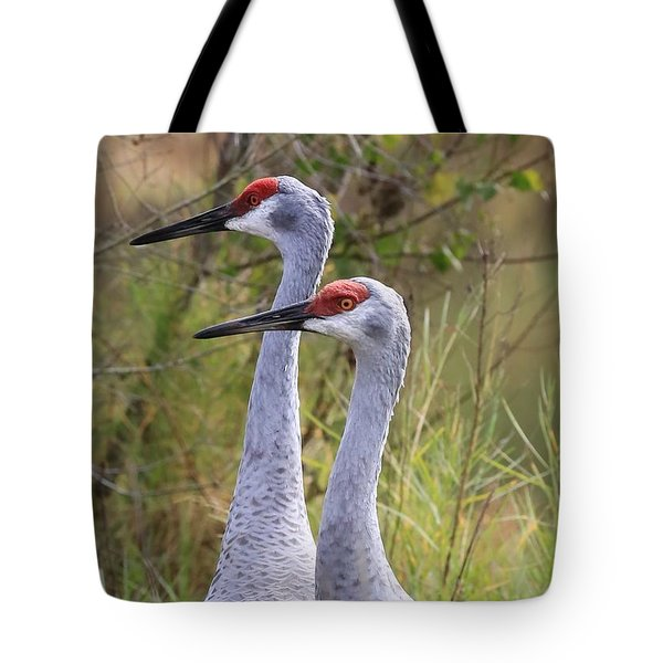 Two Sandhills In Green Tote Bag by Carol Groenen